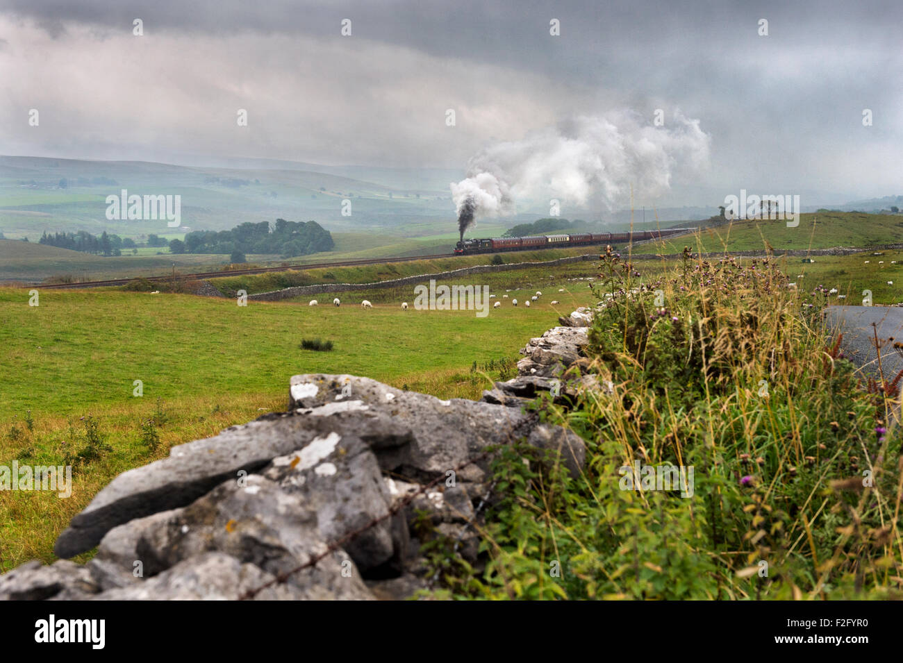 A steam train special climbs the steep gradient of the Settle to Carlisle railway on a wet day, Selside, North Yorkshire, - Stock Image