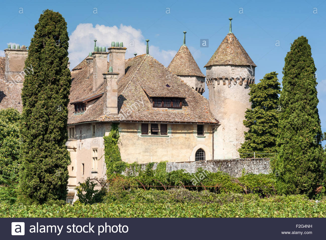 Ripaille castle and vineyard in Thonon-les-Bains (France) Stock Photo