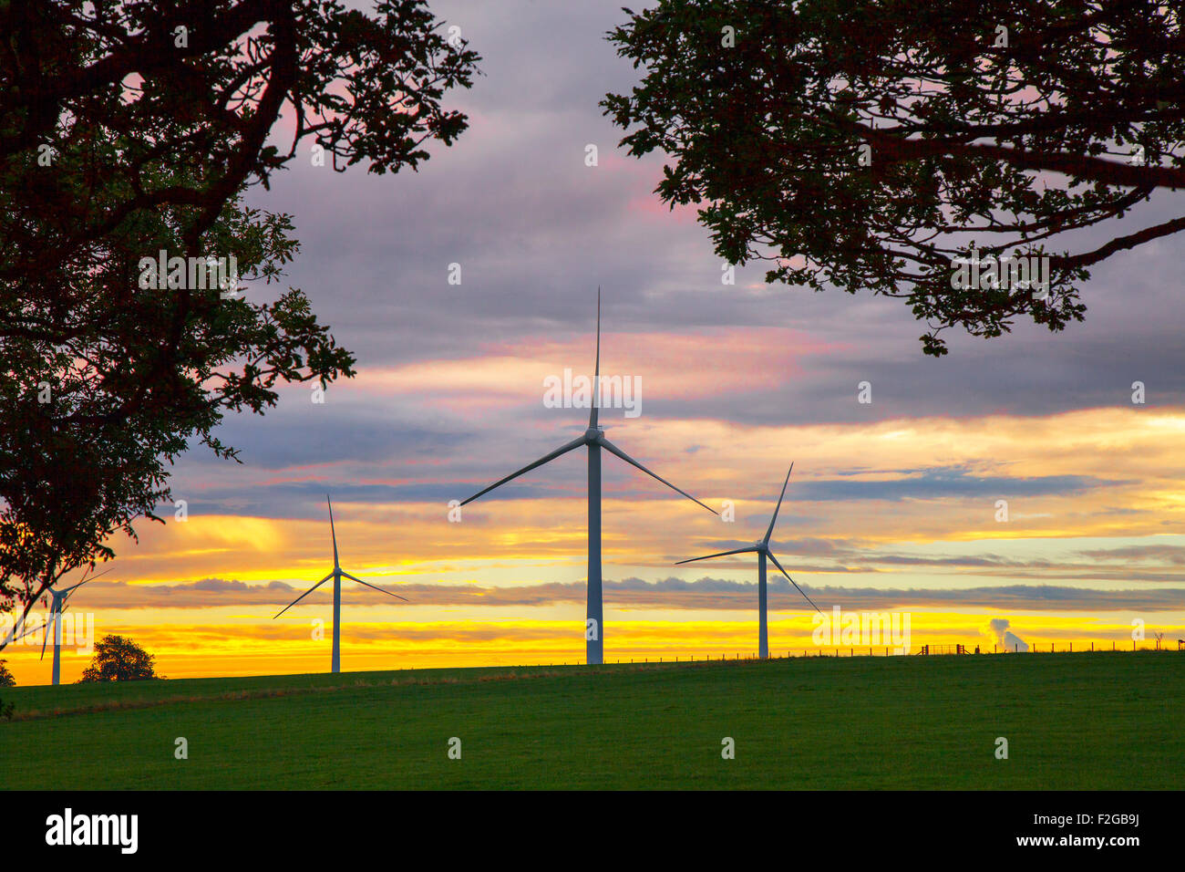 Harrogate, Yorkshire UK. 18th September, 2015. UK Weather.  Dawn over Kettlesing Wind Farm. The 2MW turbines, comprise - Stock Image