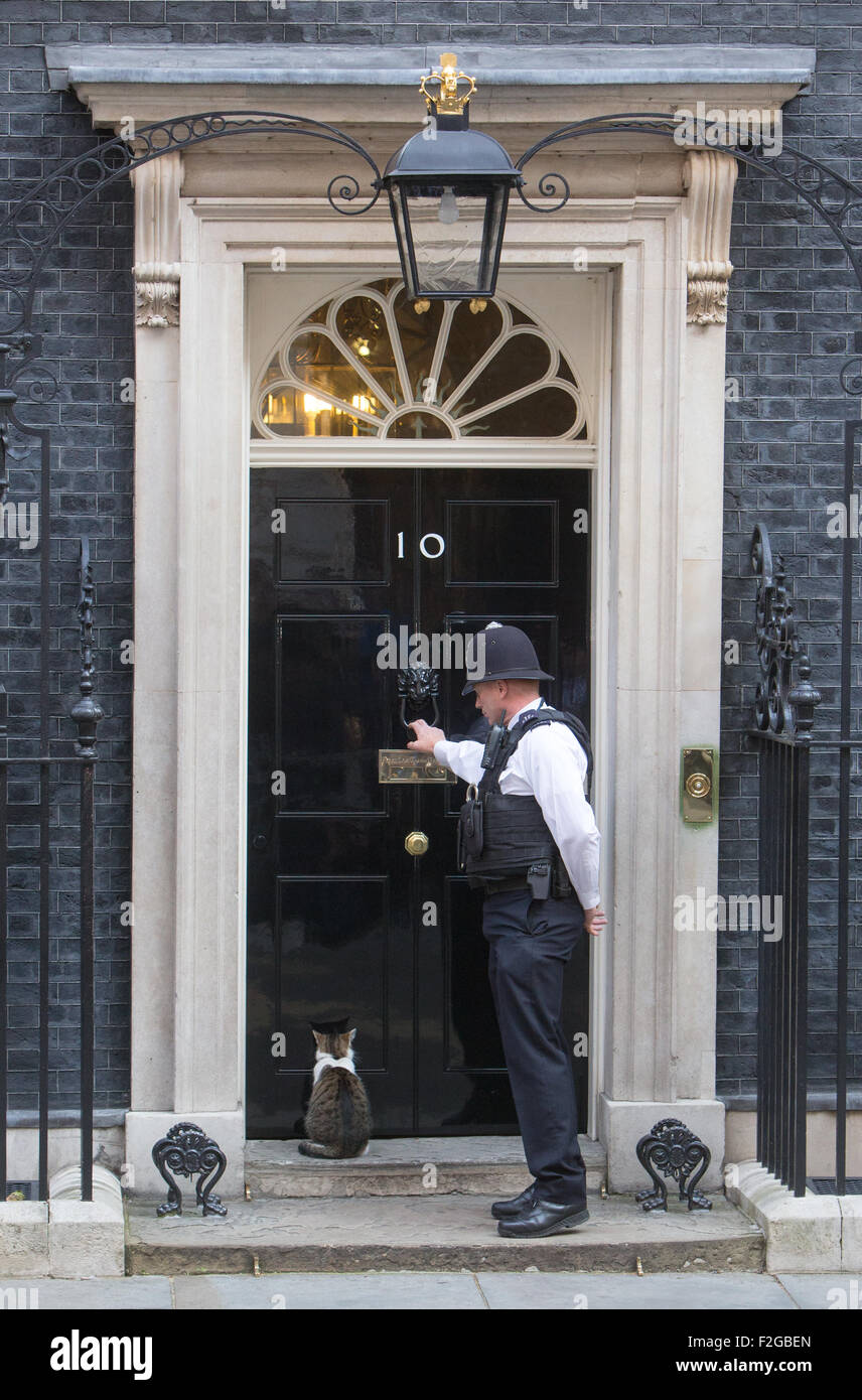 Larry the Downing street cat,Chief Mouser to the Cabinet