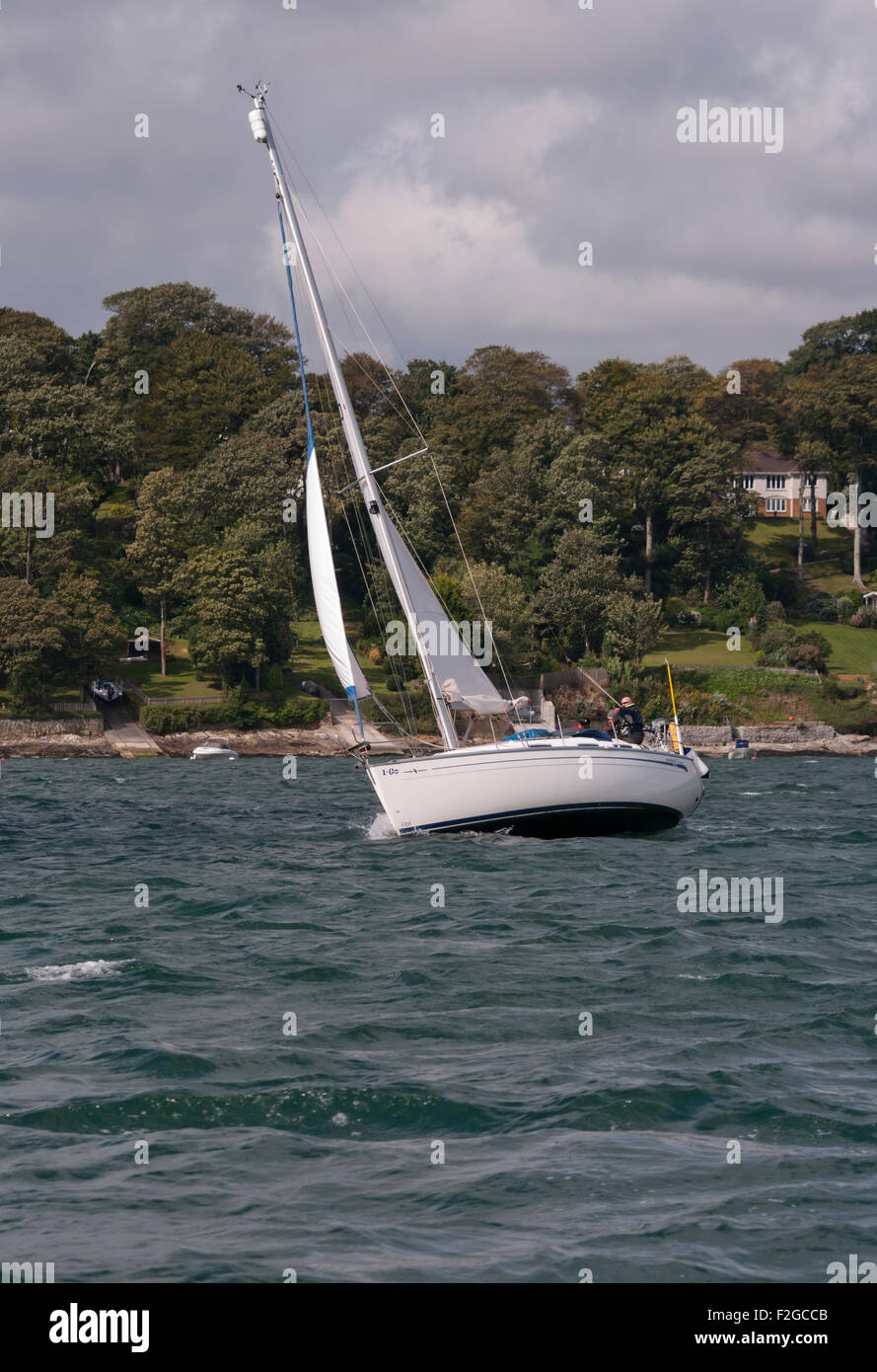 Sailing Yacht Under Sail leaning In The Wind On THe River Fal Cornwall England UK Stock Photo