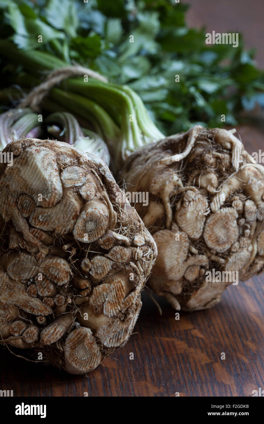 Celery root or celeriac, showing its root and with stalk and greens attached - Stock Image