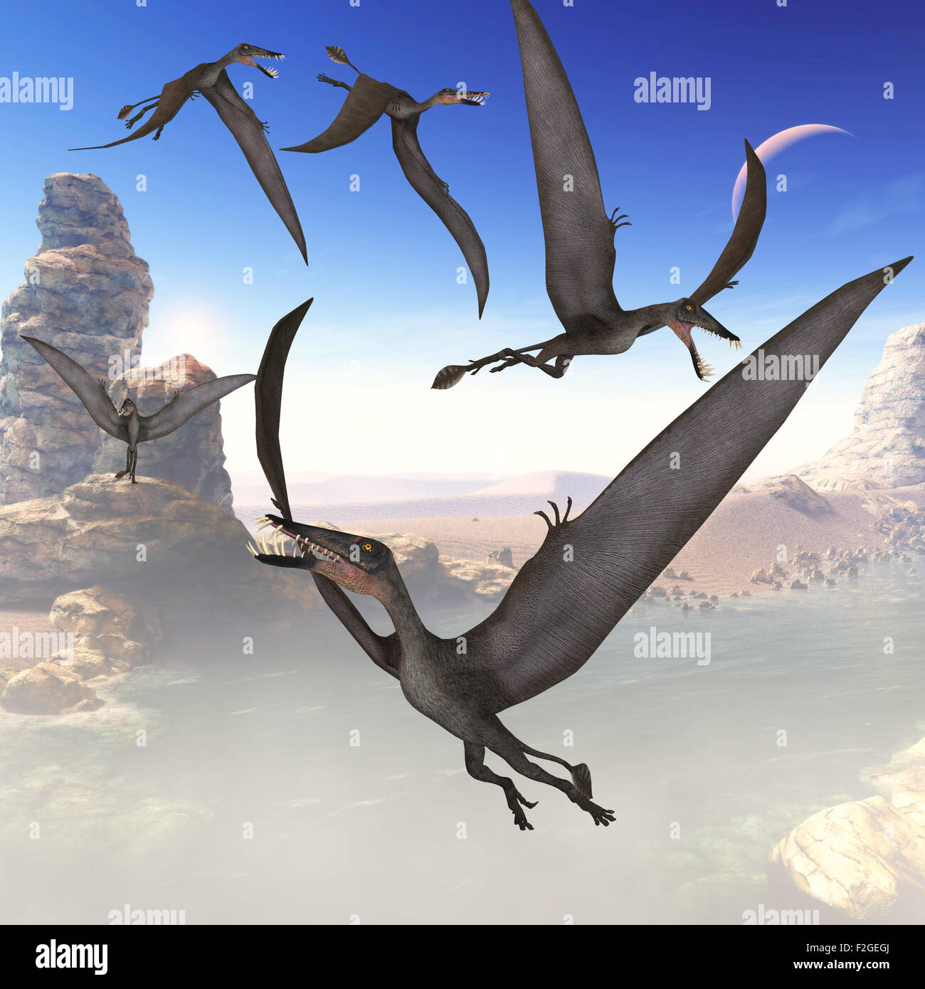 The Dorygnathus reptile was a predatory flying dinosaur that lived in the Jurassic Period of Europe. - Stock Image