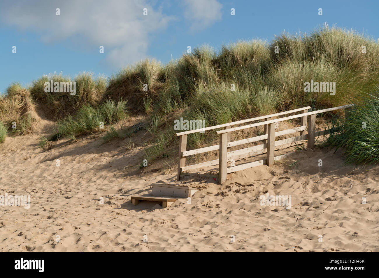 The wildlife conservation site at Gronant dunes in Flintshire, close to Prestatyn in Denbighshire. - Stock Image
