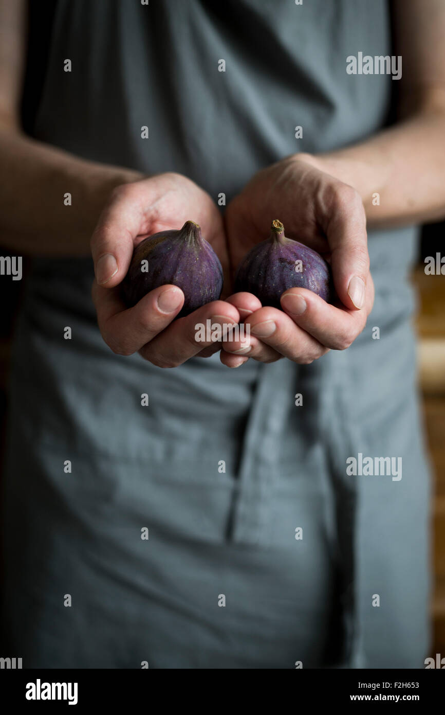 Man with kitchen apron holding figs in his hands - Stock Image
