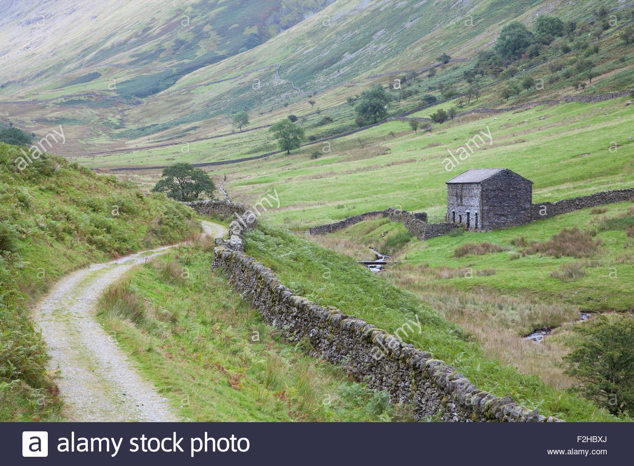 Hag Gill Valley near Troutbeck - Stock Image