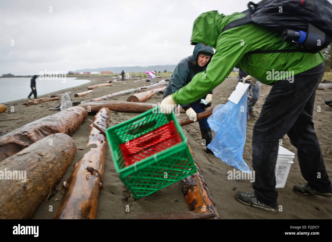 Vancouver, Canada. 19th Sep, 2015. Participants pick up a plastic case left at Iona Beach in Richmond, Canada, Sept. - Stock Image
