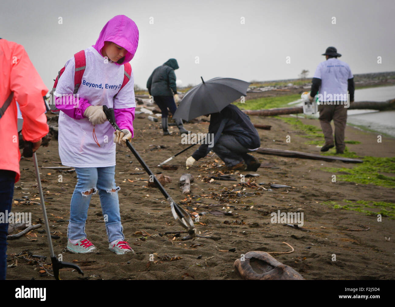 Vancouver, Canada. 19th Sep, 2015. Participants pick up debris from the shore at Iona Beach in Richmond, Canada, - Stock Image
