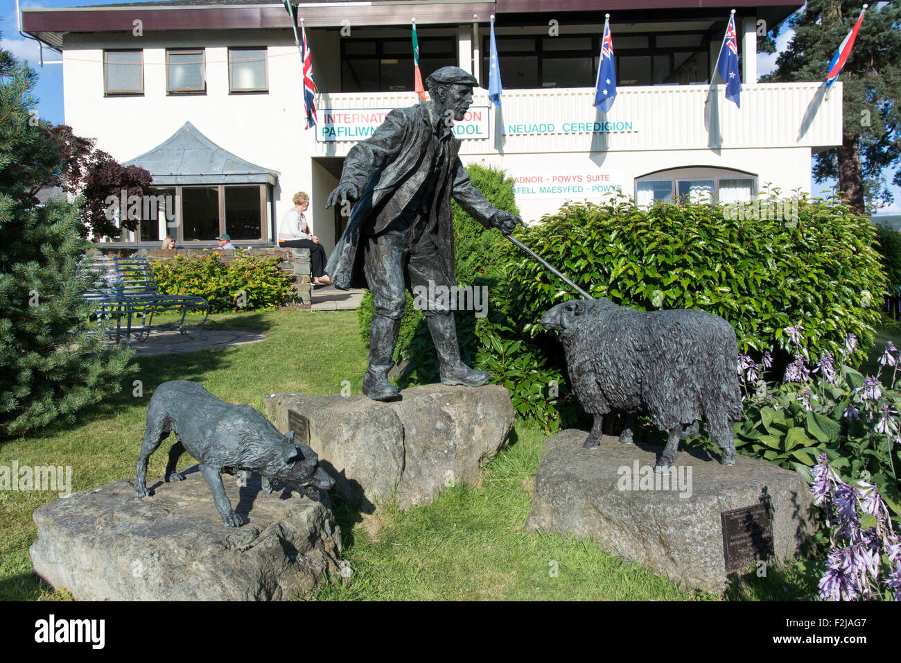 Bronze statue of shepherd and collie sheepdog with a sheep at the Royal Welsh Showground, Wales. - Stock Image