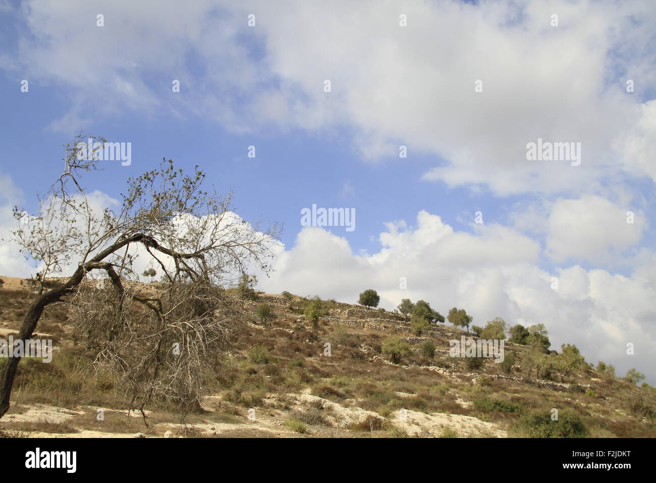 The site of Hurvat Eked, a fortress from the Hellenistic period, the fortress was also used by the rebels during - Stock Image