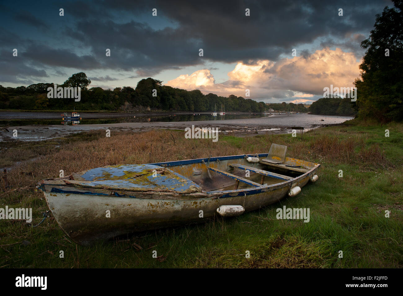Wreck of boat on bank of River Teifi at Saint Dogmaels Pembrokeshire Stock Photo