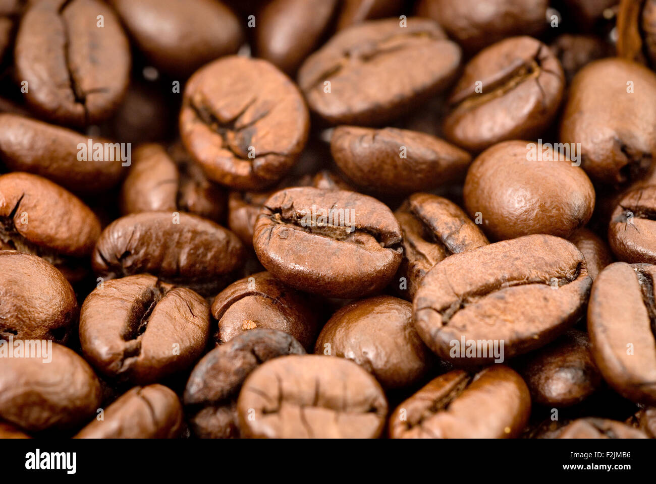 Coffee beans studio shot macro close-up - Stock Image