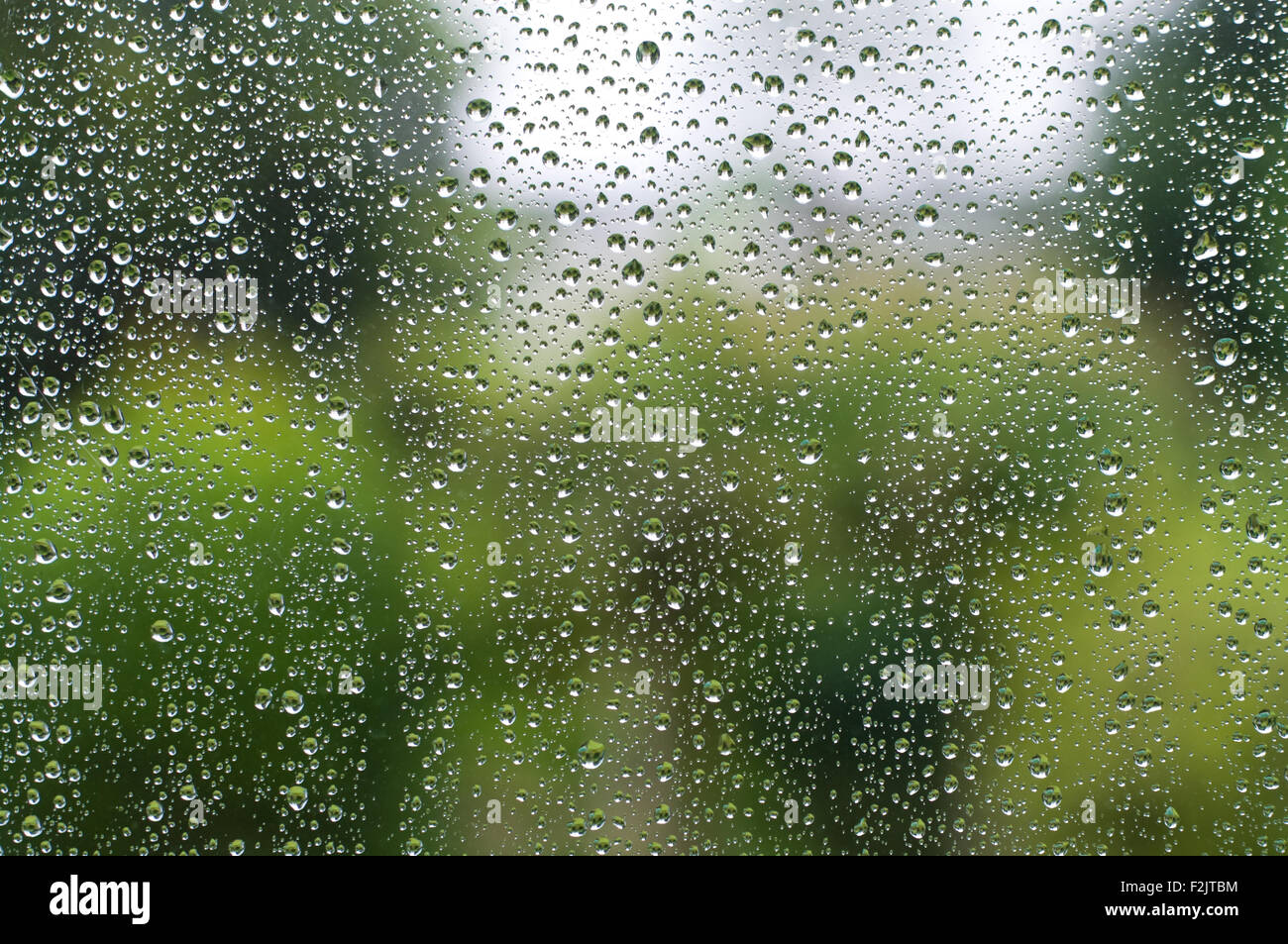 Rain drops on a window in front of out of focus green scenery. - Stock Image