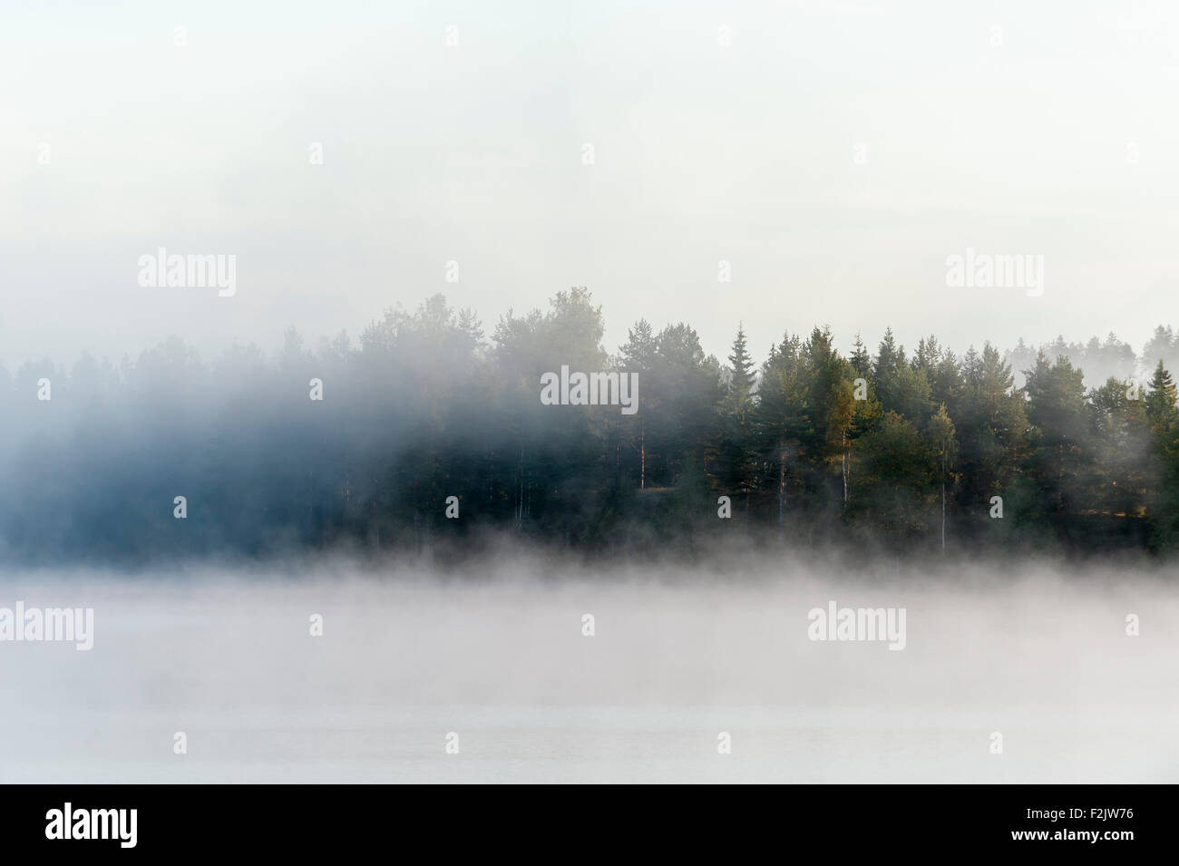 Morning mist over lake Stock Photo