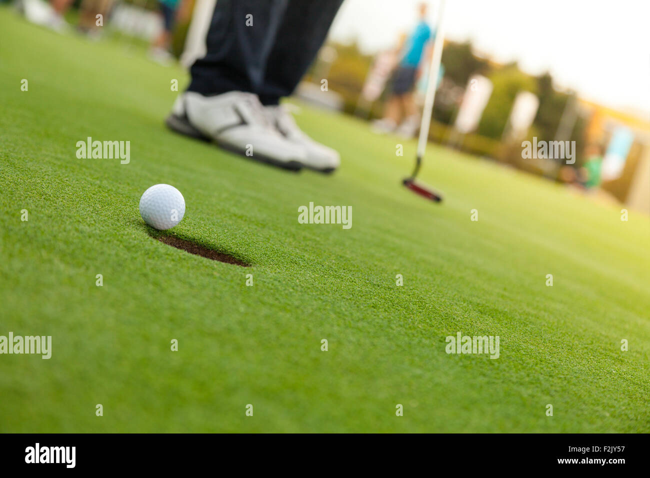 Golf player at the putting green - Stock Image