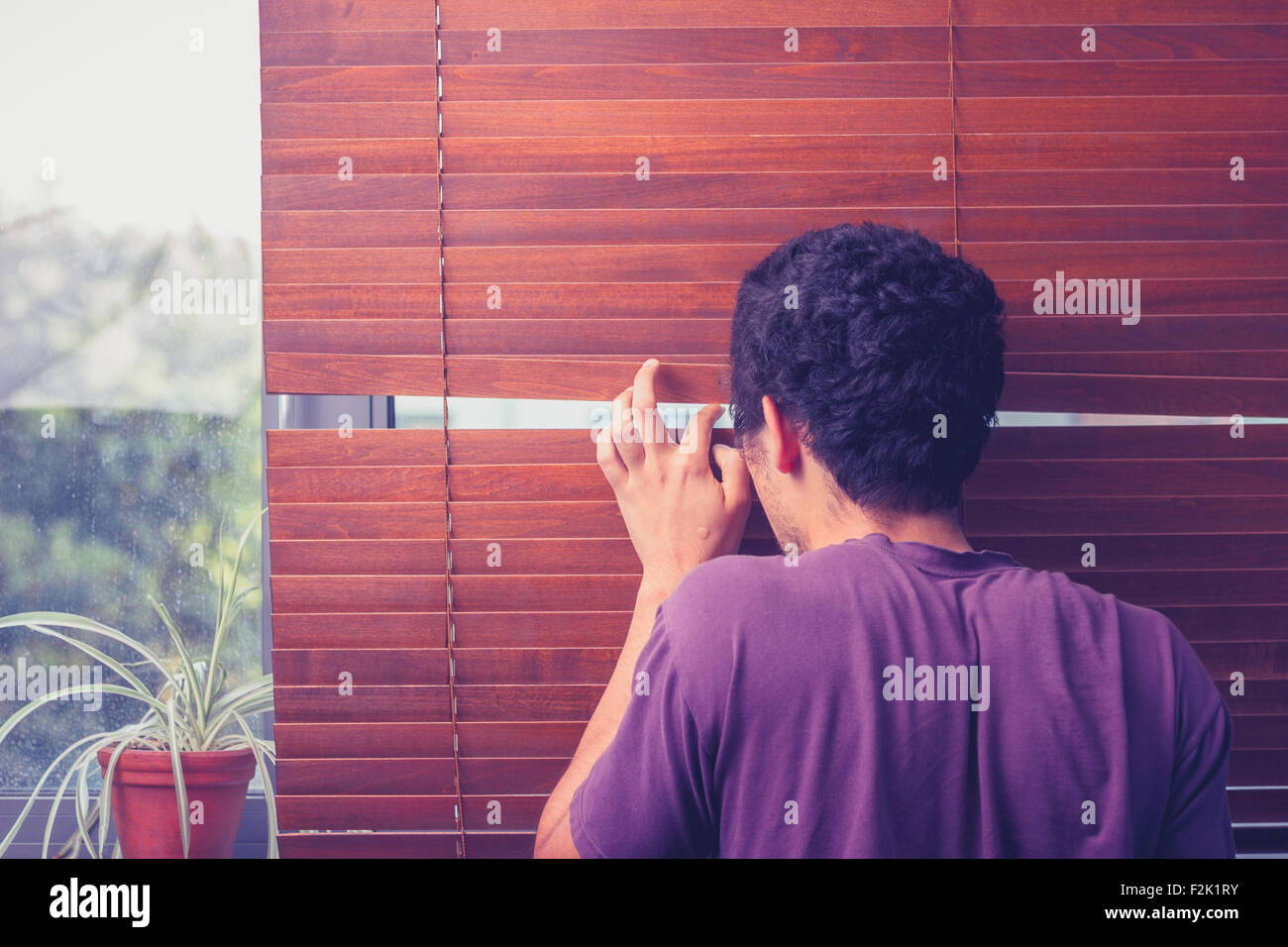 Young man peeping out through curtain blinds - Stock Image