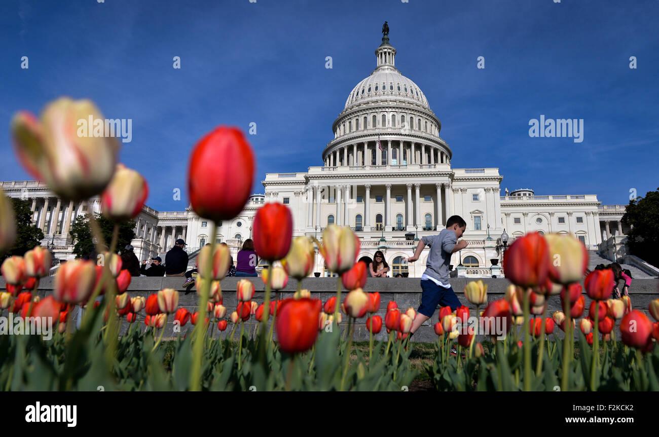 (150921) -- WASHINGTON D.C., Sept. 21, 2015 (Xinhua) -- File photo taken on April 17, 2014 shows tourists watch - Stock Image