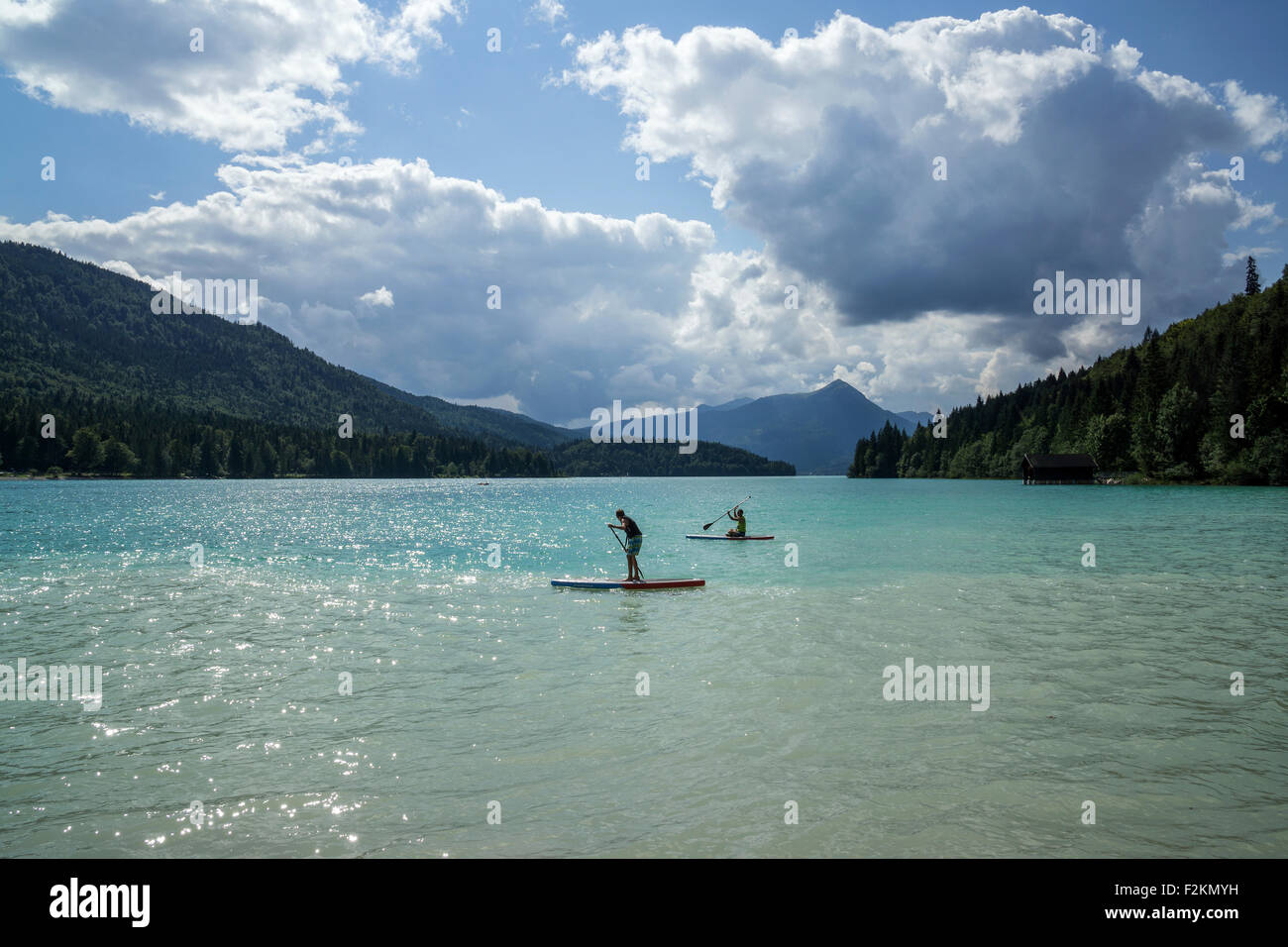 Turquoise blue water, Walchensee, two youths paddling on paddle boards, stand up paddling, Herzogstand behind, Upper - Stock Image
