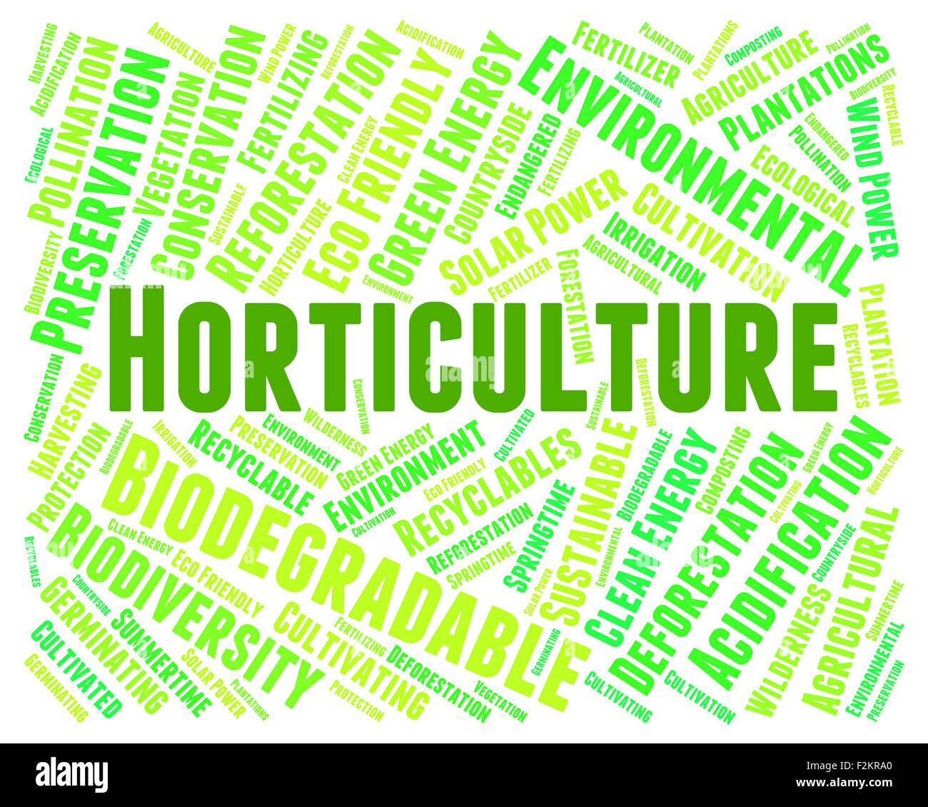 Horticulture Word Meaning Flower Garden And Gardening Stock Photo