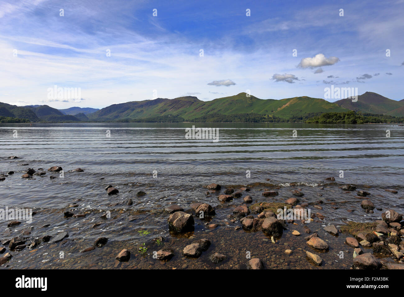 Catbells across Dewent Water from Calfclose Bay, Cumbria, Lake District National Park, England, UK. - Stock Image