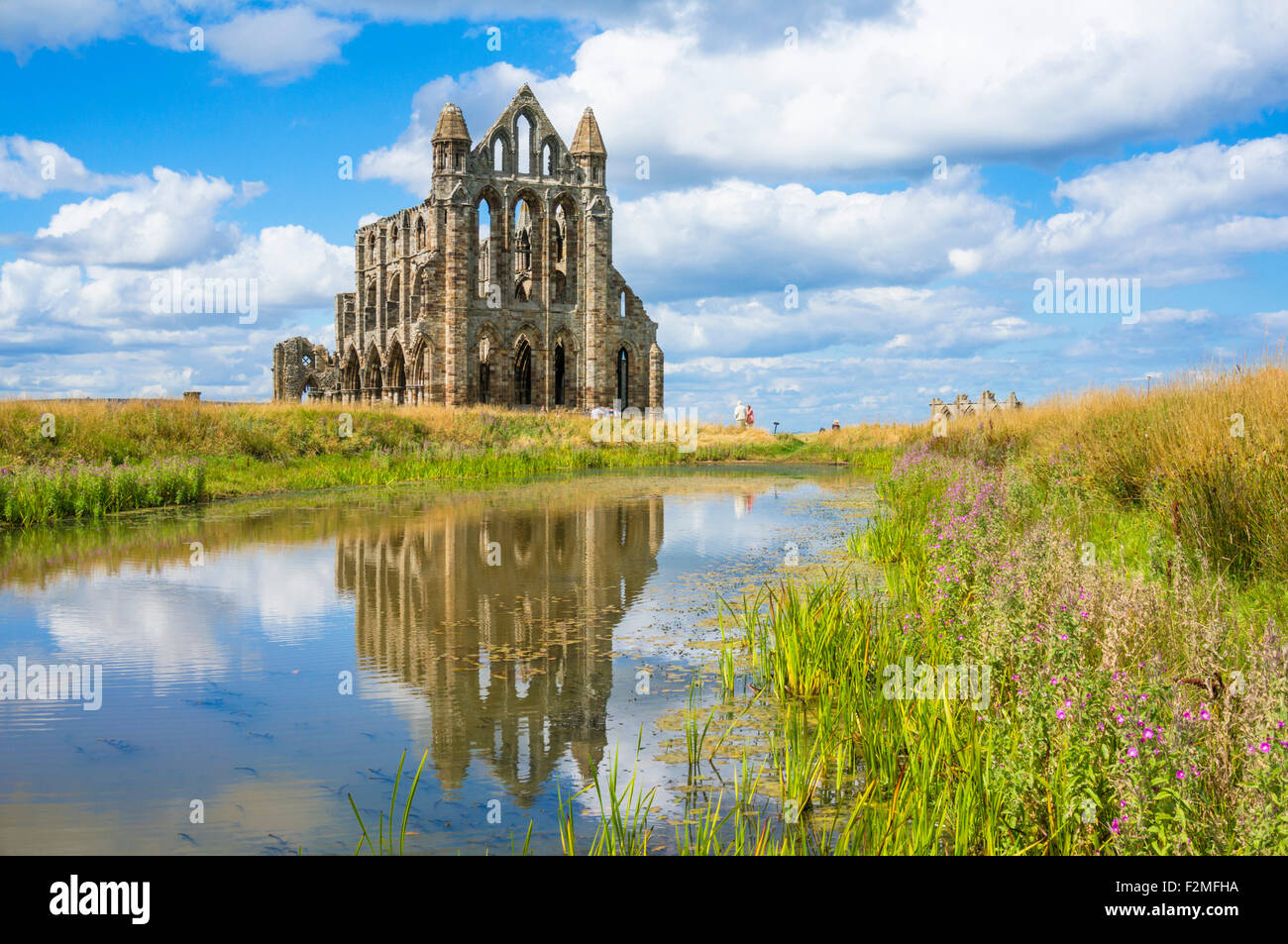 Whitby abbey ruins with reflections in a small still pool Whitby Norjavascriptth Yorkshire England Great Britain - Stock Image