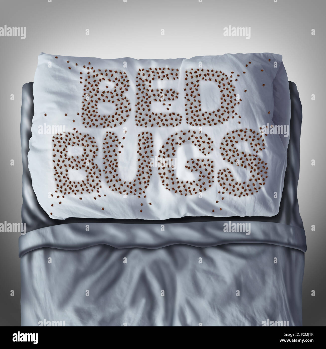Bed bug on pillow and in bed as a bedbug infestation concept shaped as text letters as parasitic insect pests under - Stock Image