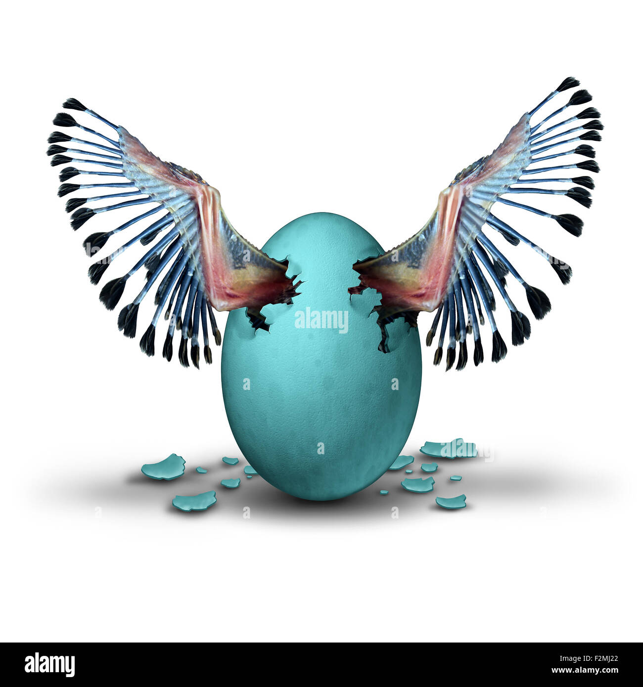 Premature start concept and impatient ambition business metaphor as the young wings of a baby bird emerging and - Stock Image