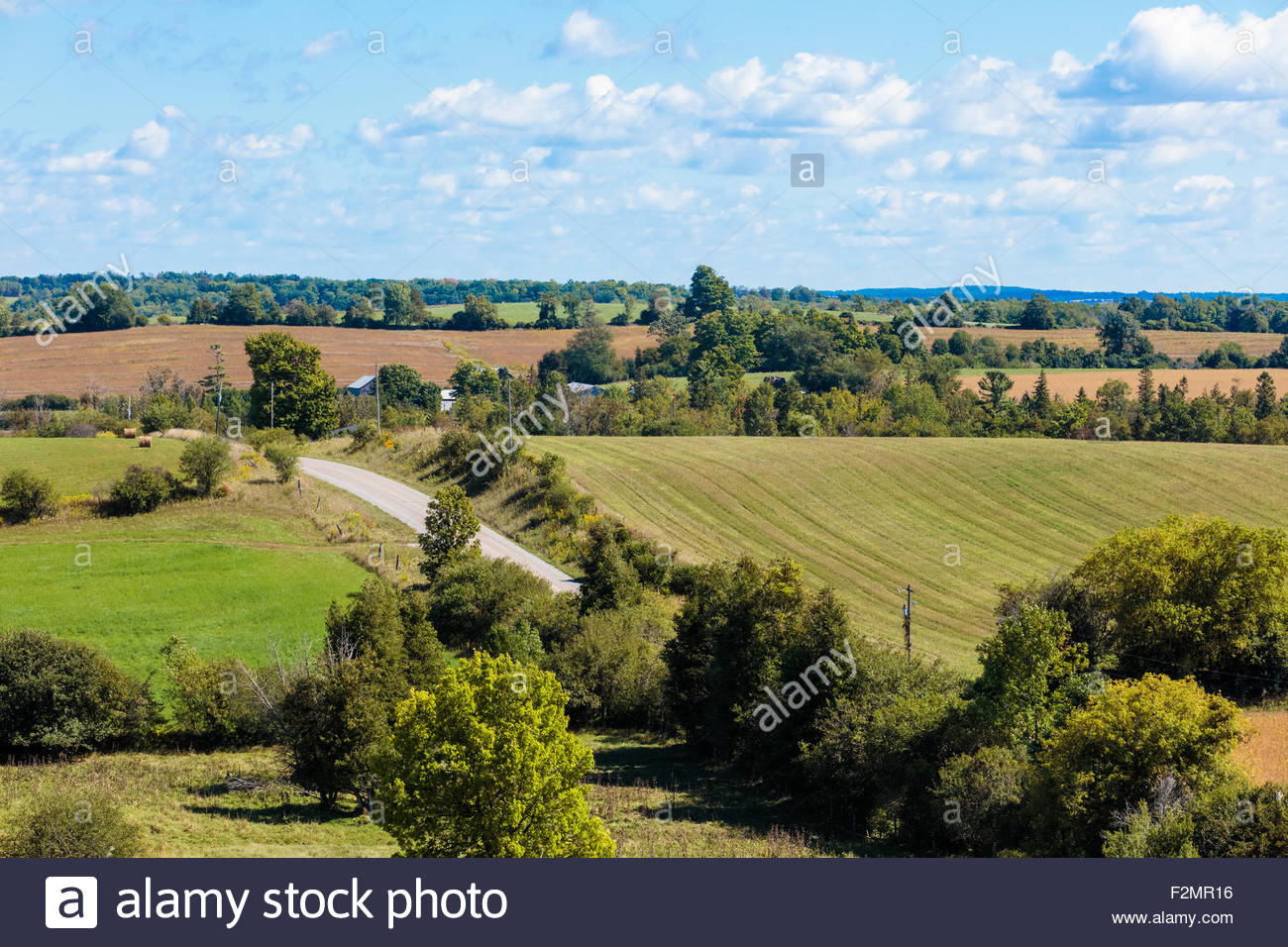 Country gravel road and hedgerows on the drumlin hills of Northumberland County in late summer in Southern Ontario - Stock Image