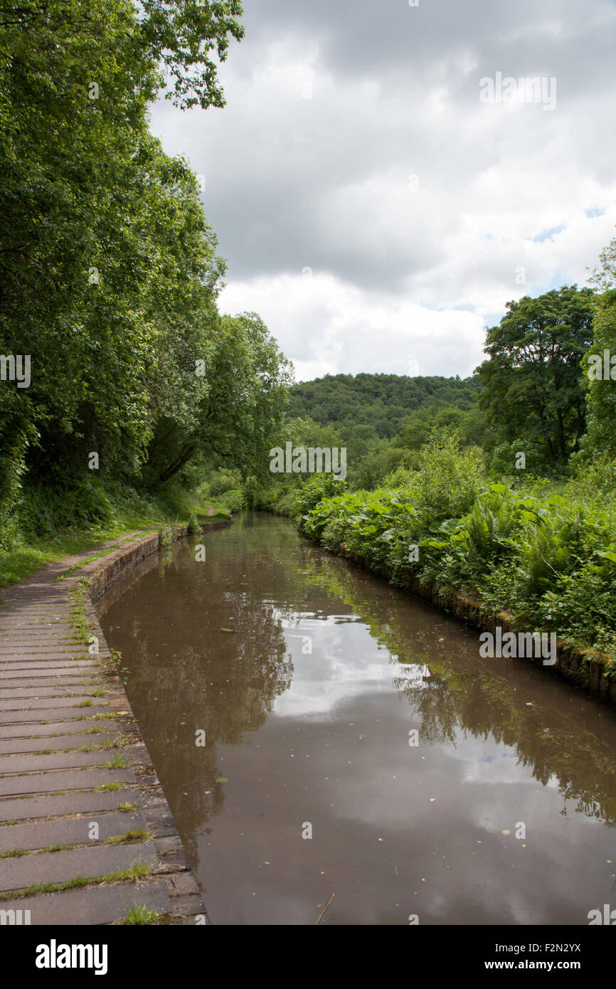 The Caldon Canal between Kingsley and Froghall and Consall Churnet Valley Staffordshire England - Stock Image