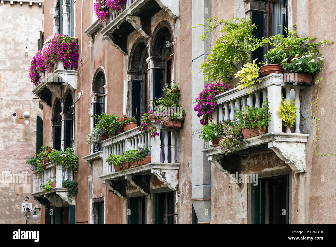 Flowers and plants adorn the Venitian balconies, Venice, Italy - Stock Image