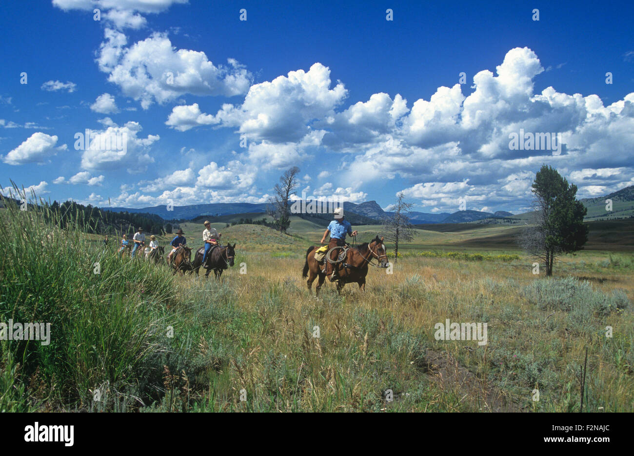 Horseback riders at Tower Junction, Yellowstone National Park, Wyoming, USA. Stock Photo