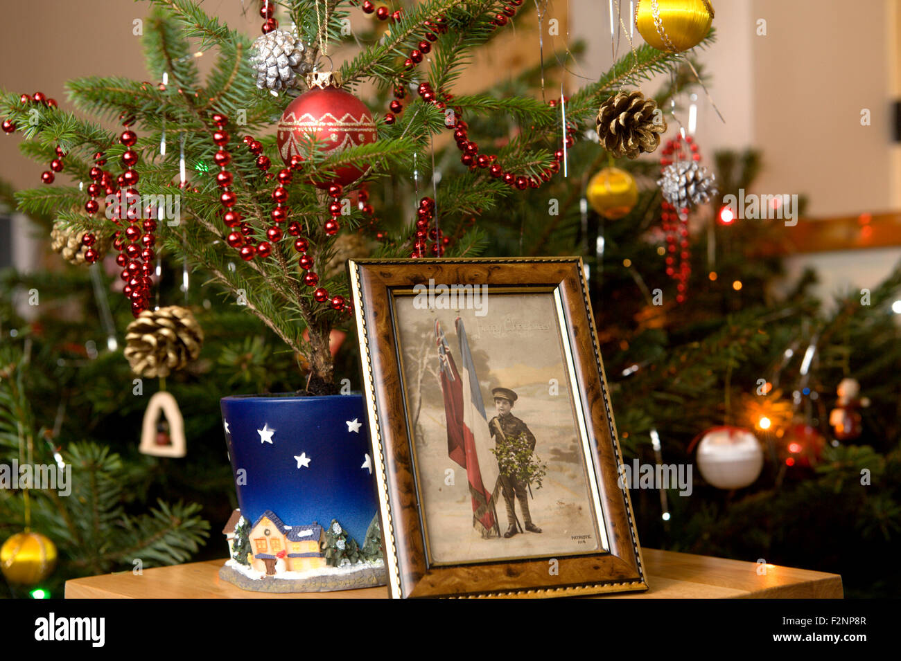 Nostalgic postcard from the first world war framed and standing in front of a decorated traditional Christmas tree - Stock Image