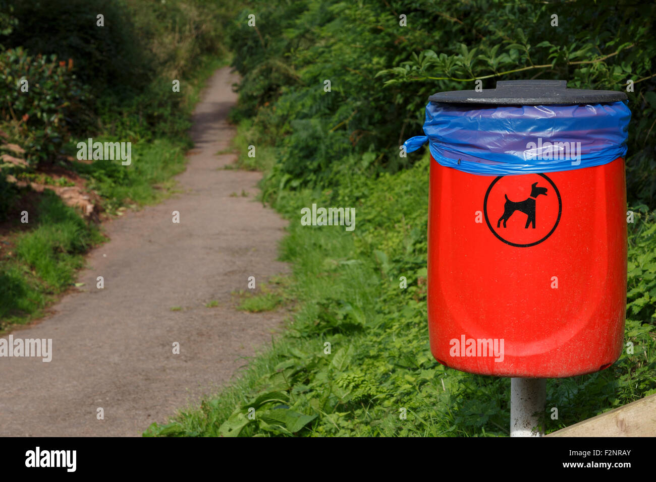 Dog poo bin on footpath. Stock Photo