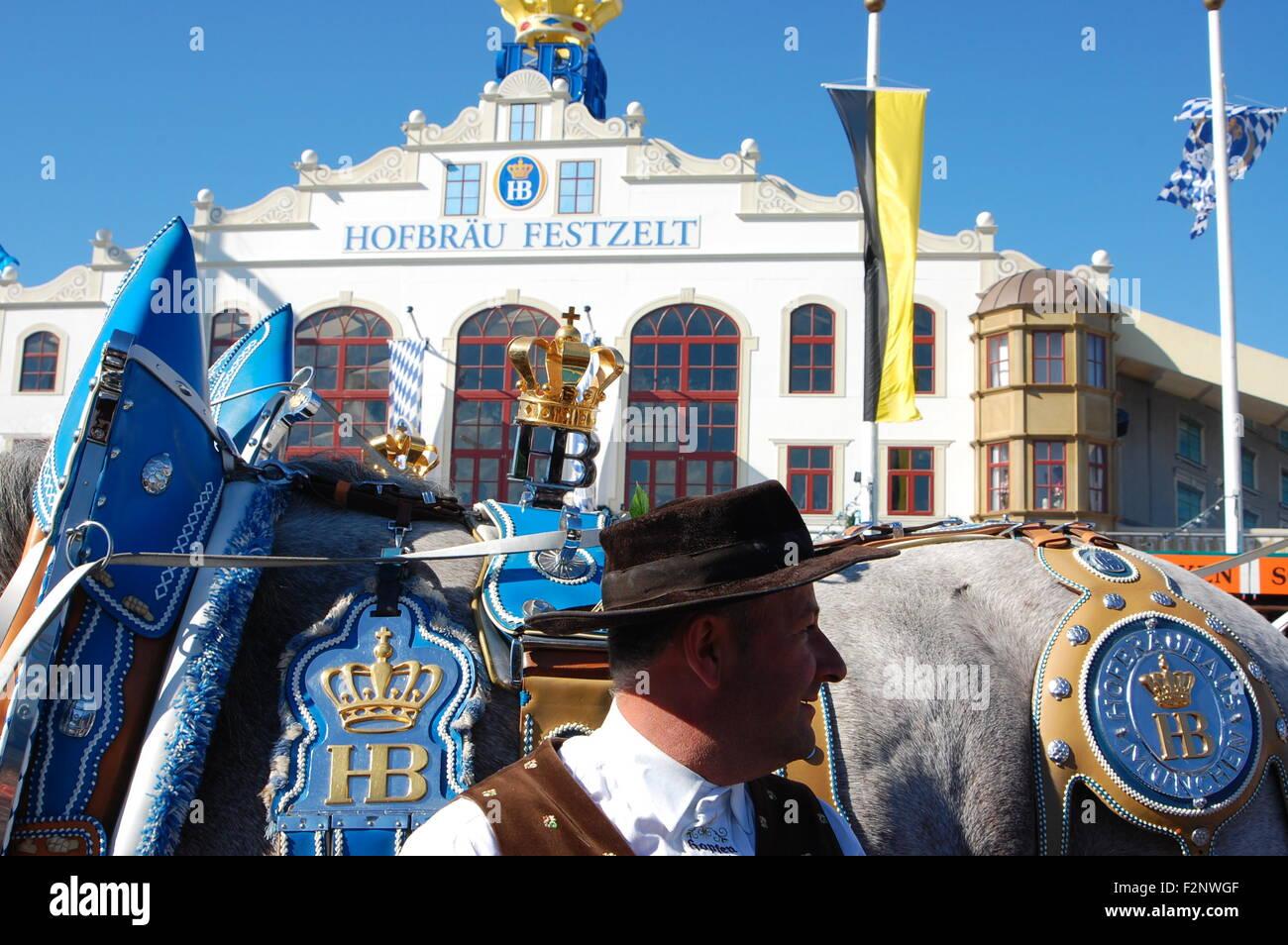 Hofbräu Festzelt and Hofbräu horse pulling beer kegs at the Oktoberfest, Munich, Germany - Stock Image