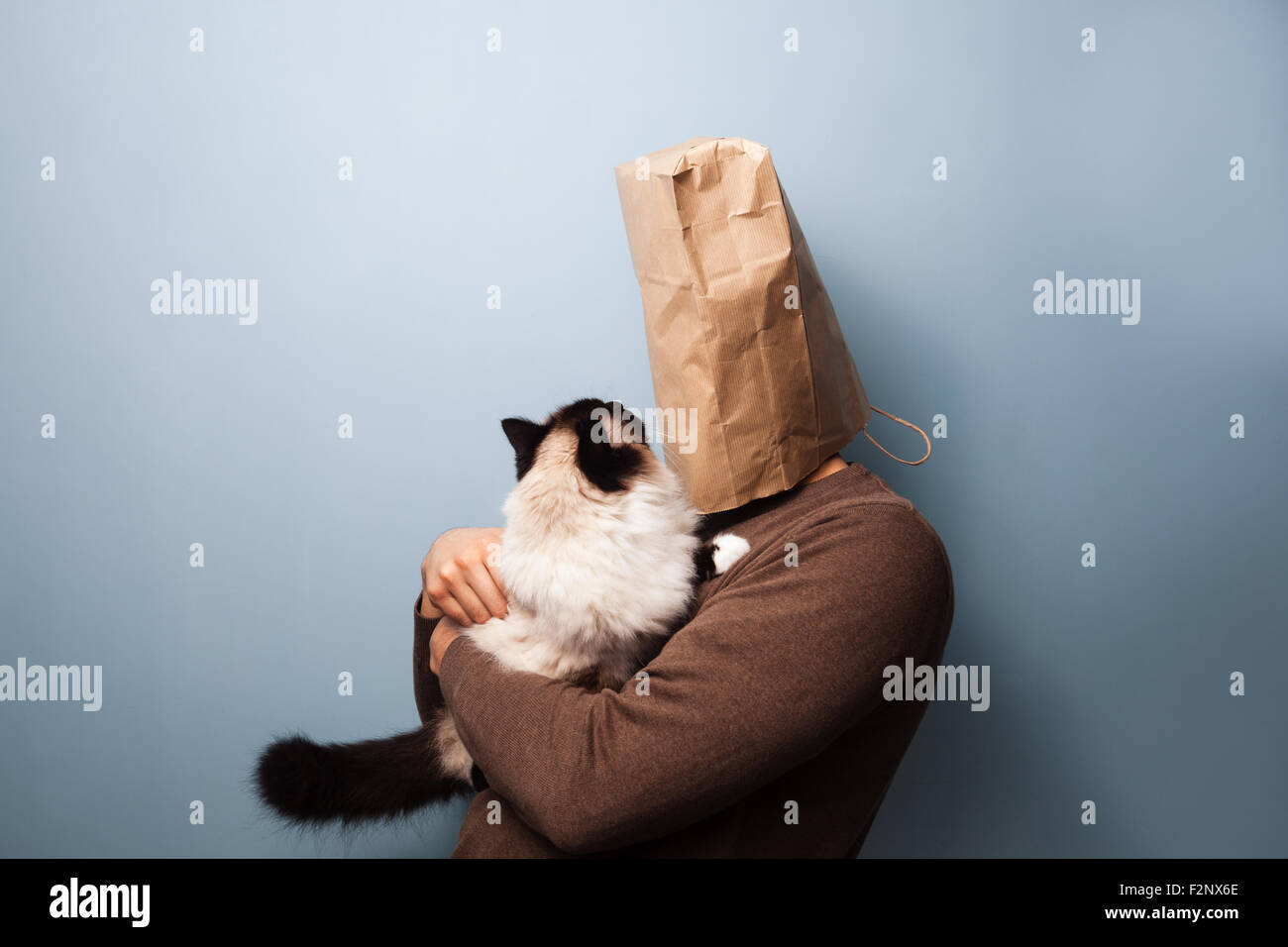 a man with a paper bag on his head is holding a confused cat. - Stock Image