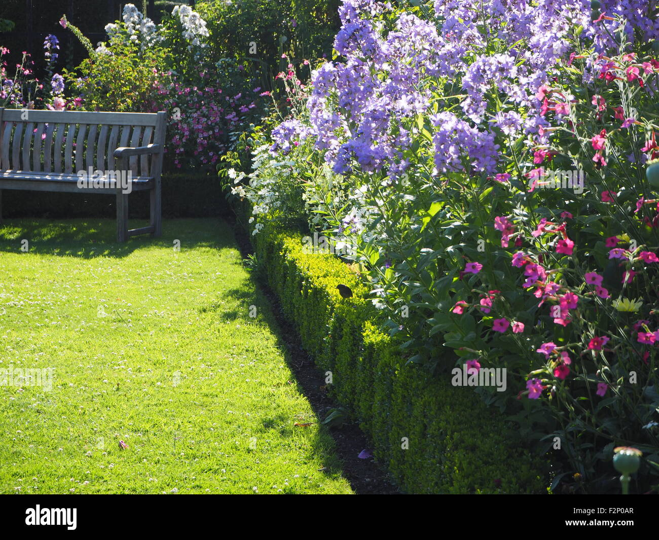 Sunny corner of Chenies Manor Garden in high summer. Wooden bench seat surrounded with tall perennials in pastel - Stock Image