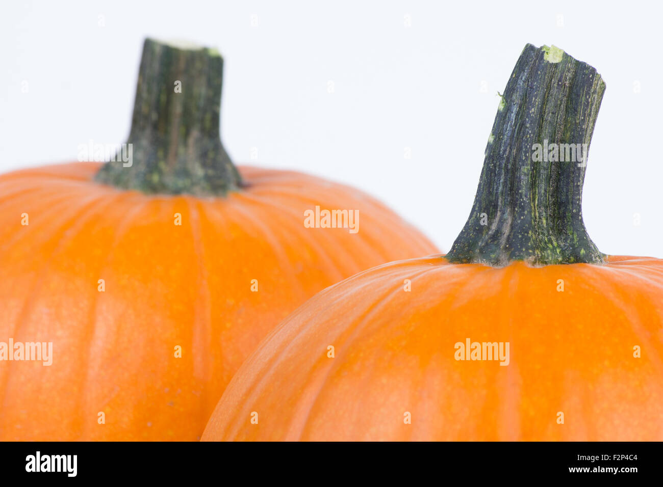 Closeup of two pumpkins isolated on white. - Stock Image