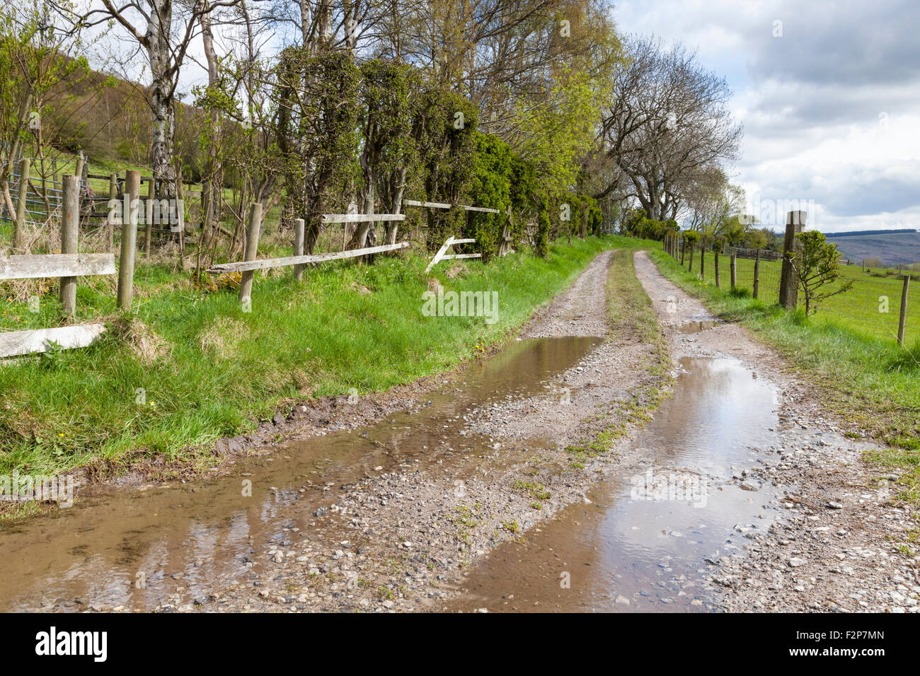 Wet weather in the countryside. Farm track or lane with puddles after rain, Derbyshire, England, UK Stock Photo