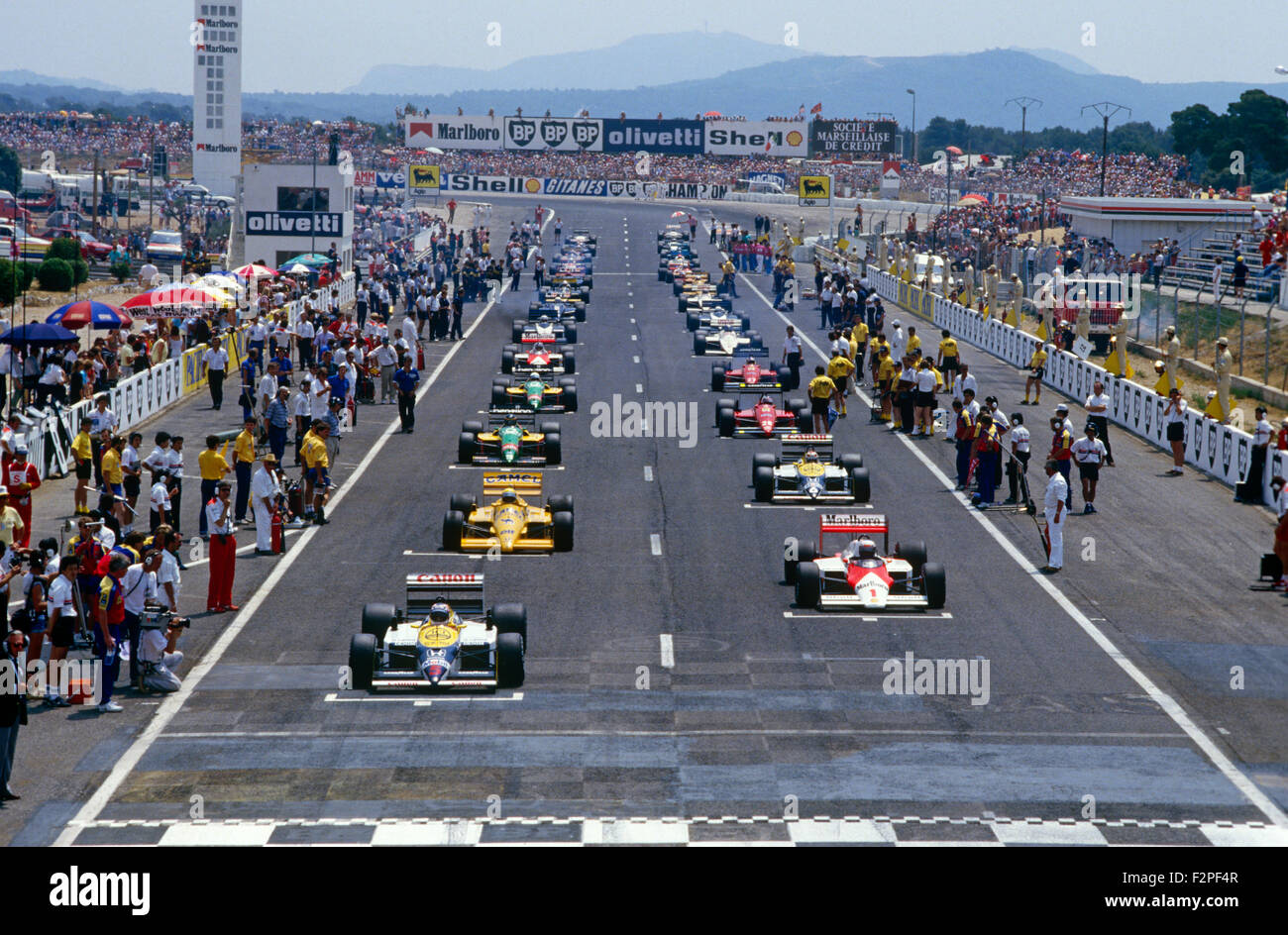 f1 cars in the grid at the start of the french gp at le castellet stock photo 87775991 alamy. Black Bedroom Furniture Sets. Home Design Ideas
