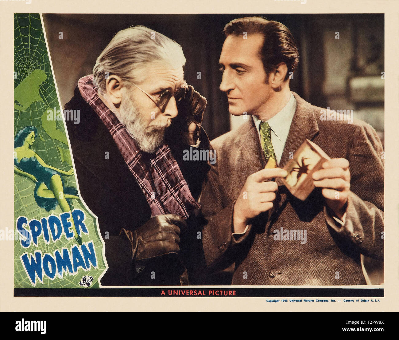 spider woman full movie