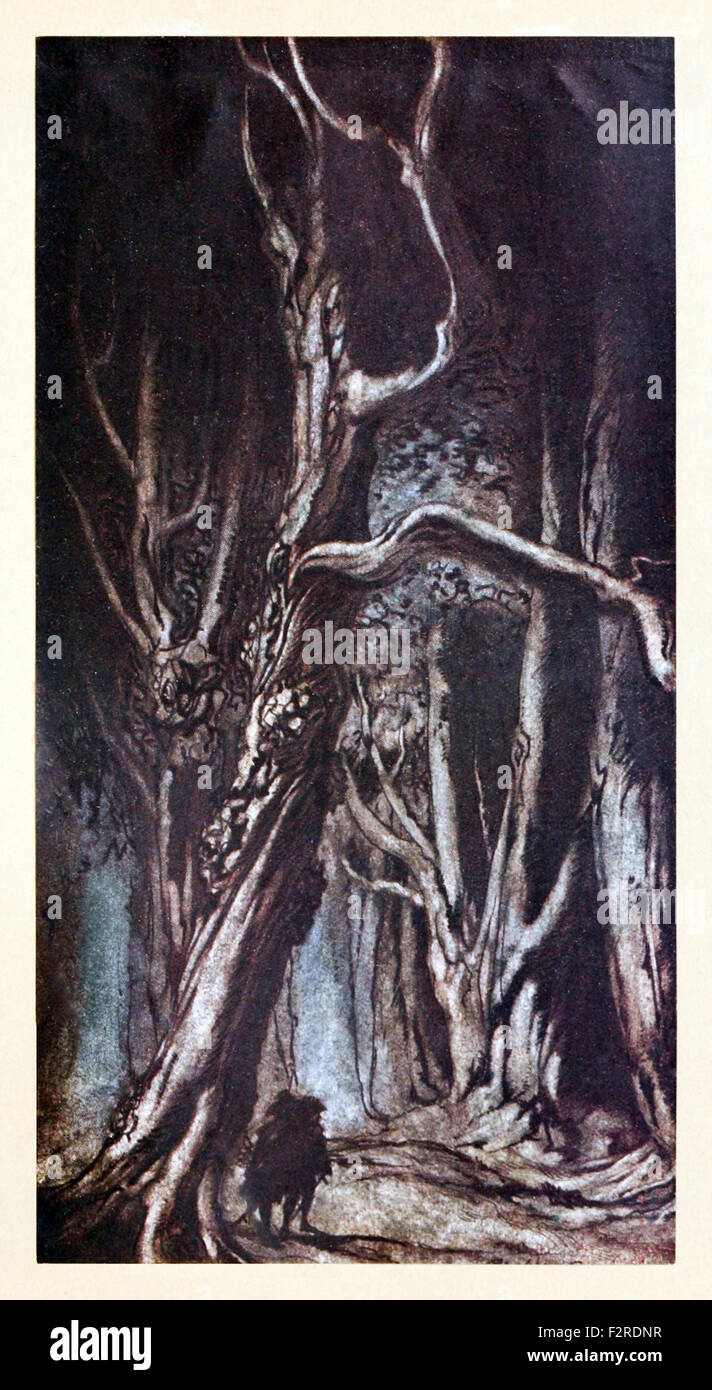 'Enter the Two Brothers' from 'Comus' by John Milton, illustration by Arthur Rackham (1867-1939). - Stock Image