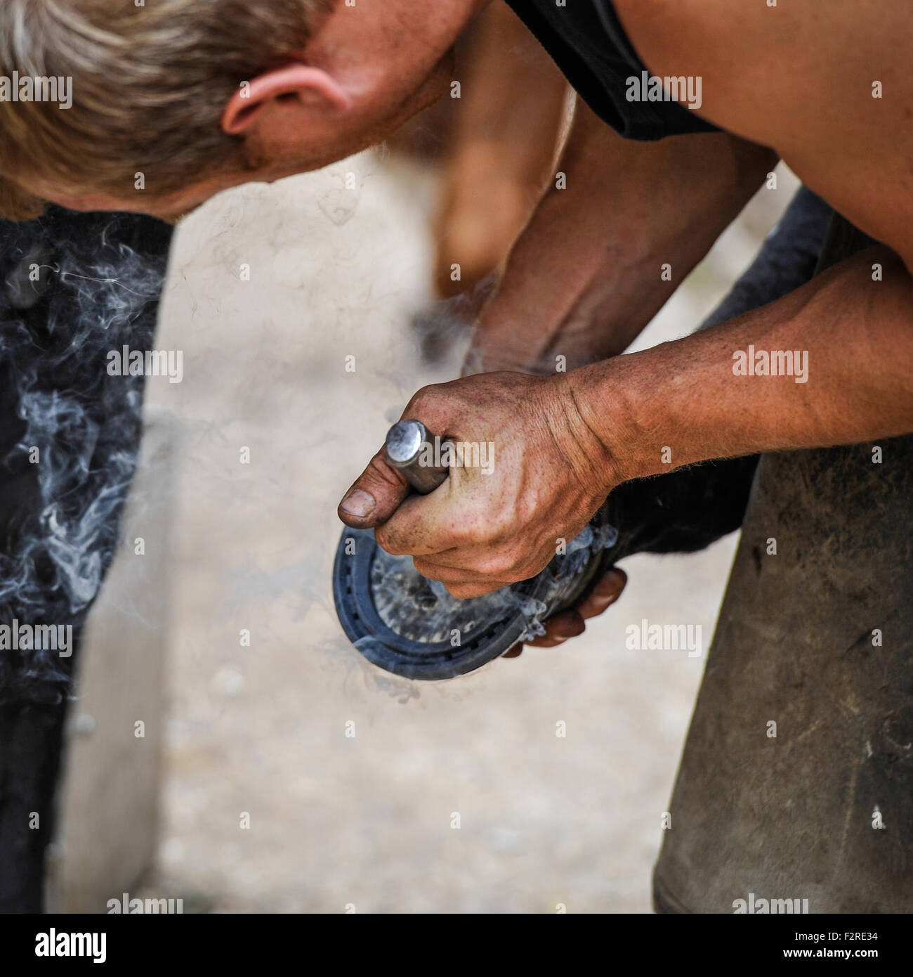 A farrier hard at work re shoeing horses - Stock Image
