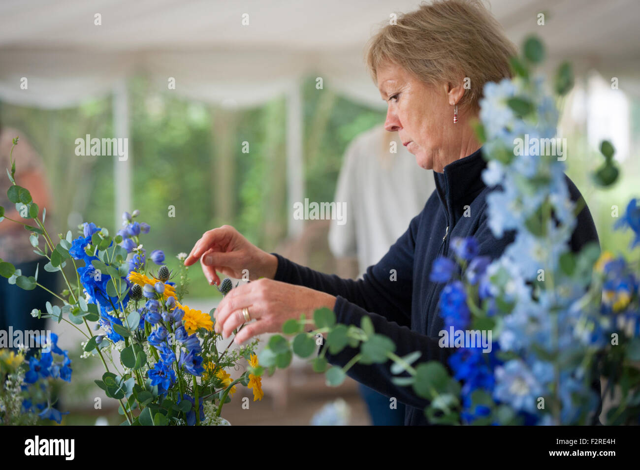 A mature woman arranging flowers - Stock Image
