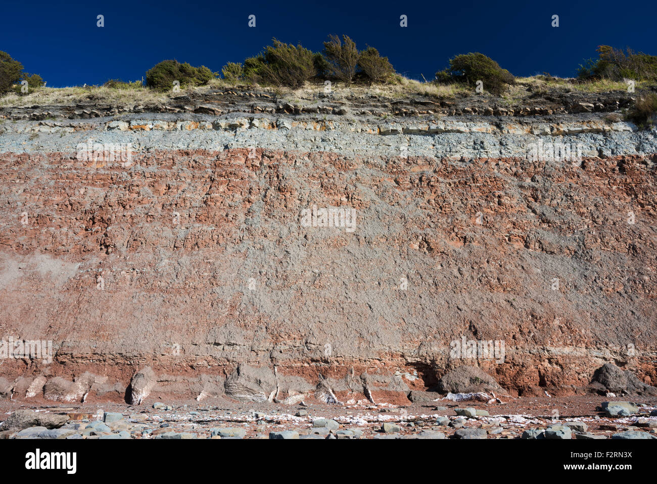 Aust Cliff is an important and famous geological site, exposing Triassic to Lower Jurassic rocks unconformably overlying - Stock Image