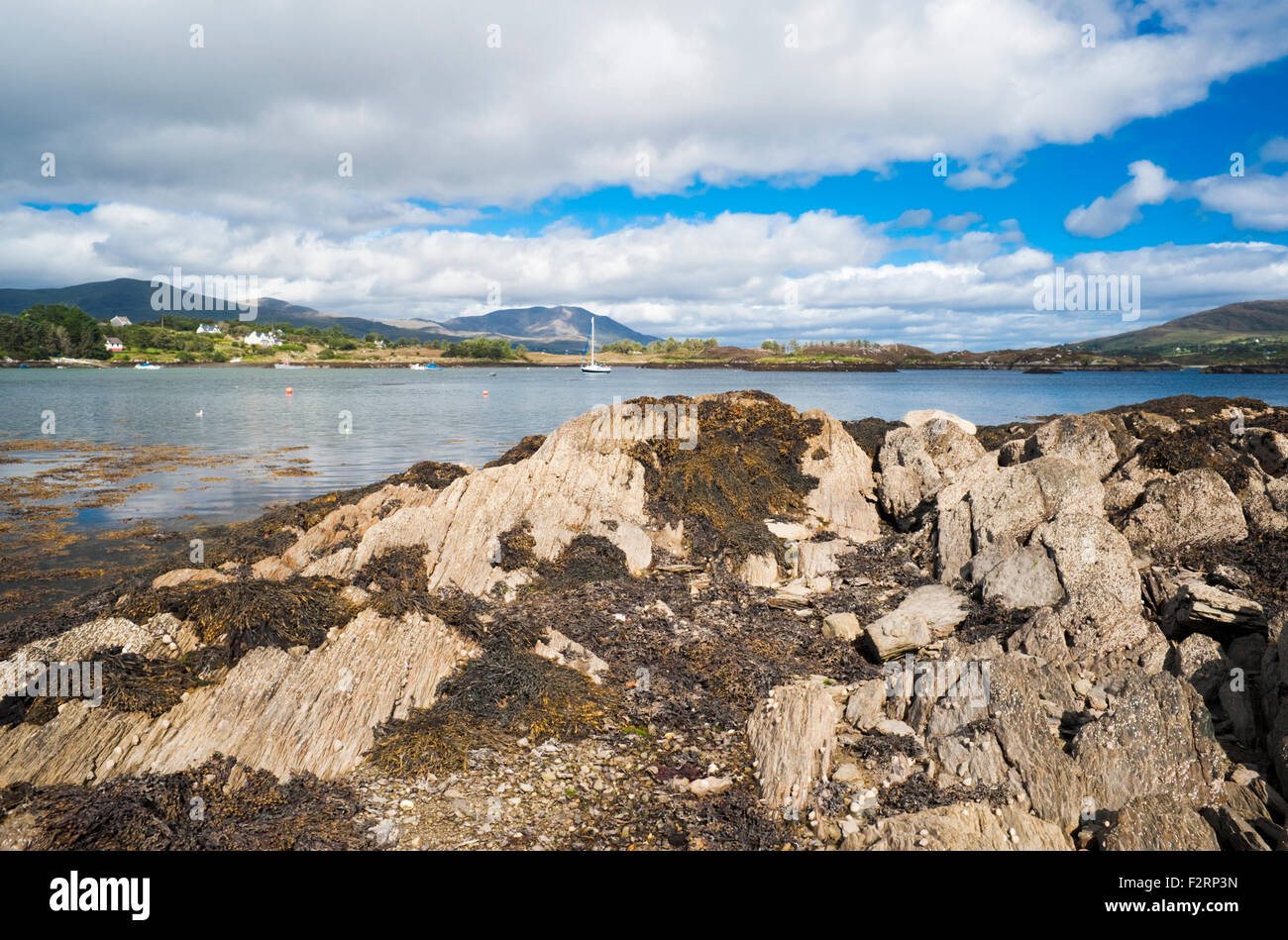 Castletownbere Harbour, Bantry Bay, Beara Peninsula, County  Cork, Ireland, with Hungry Hill and Bere Island in - Stock Image