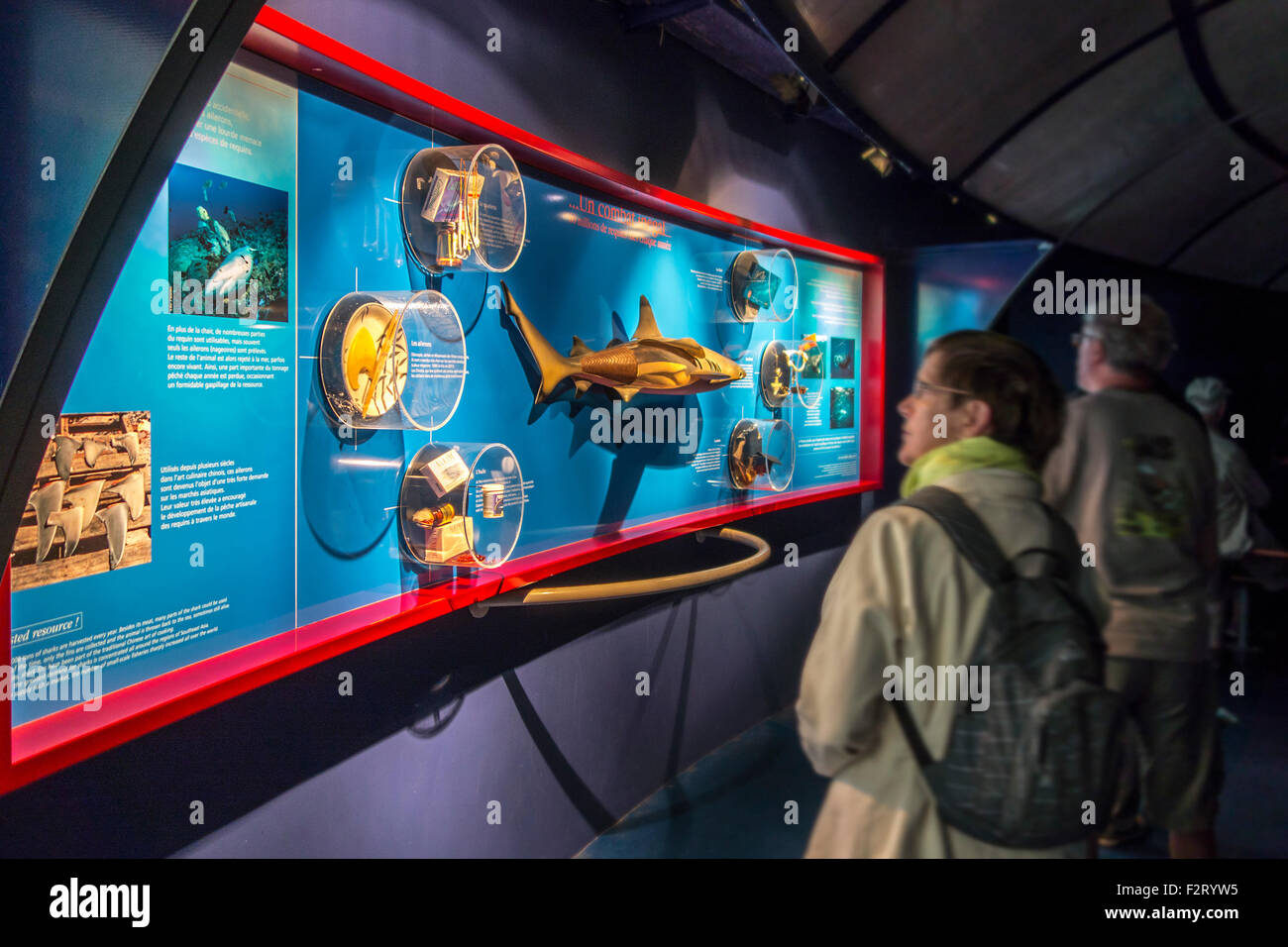Visitors looking at display about sharks at Oceanopolis - ocean discovery park - at Brest, Brittany, France - Stock Image
