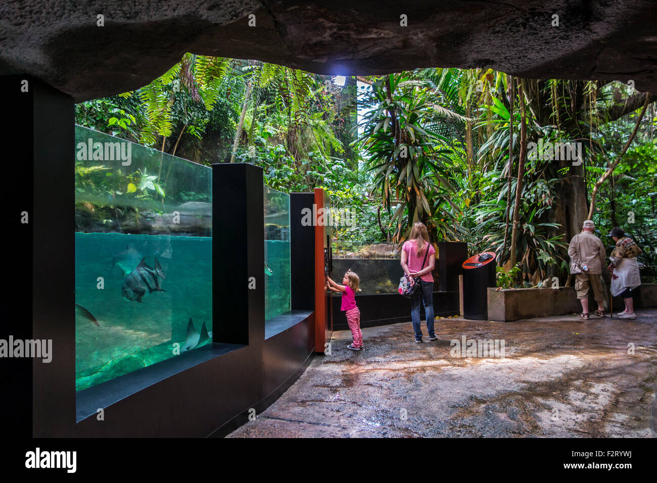 Visitors looking at tropical fishes in huge aquarium at Oceanopolis - ocean discovery park - at Brest, Brittany, - Stock Image