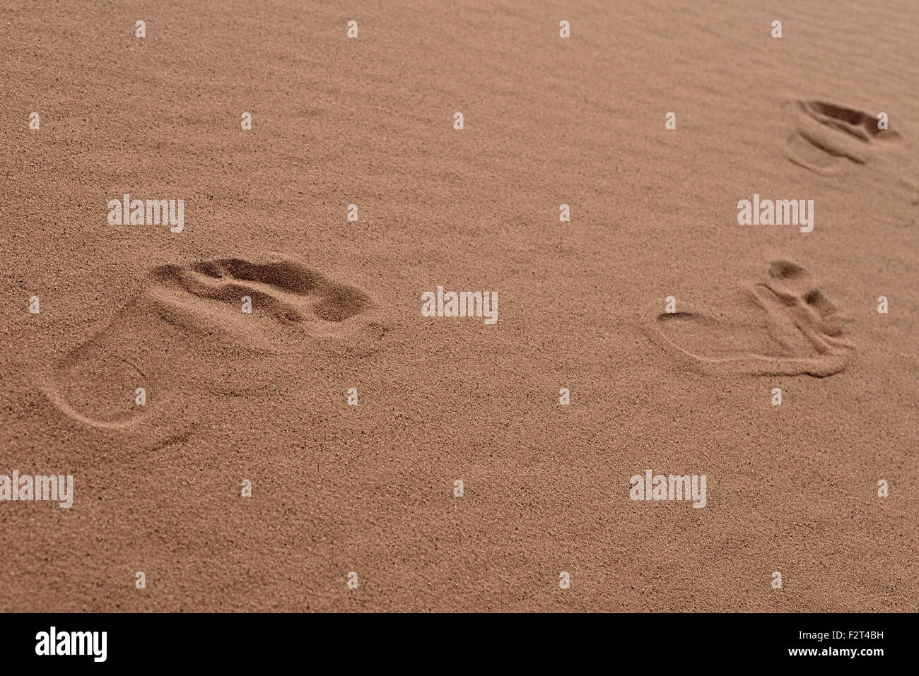 footsteps in Sahara in Morocco near Merzouga - Stock Image