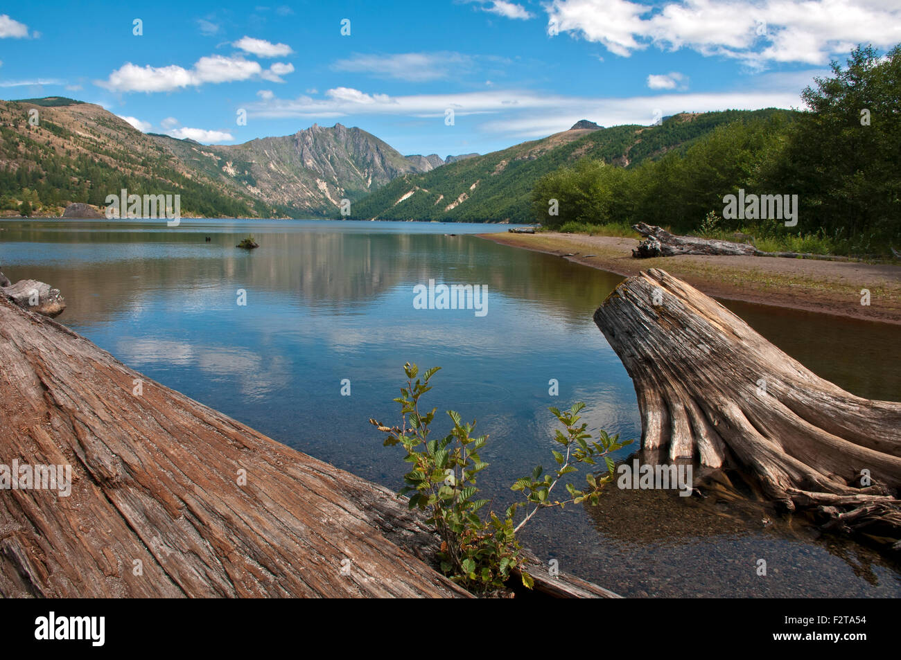 Coldwater lake in  St Helens volcanic monument - Stock Image