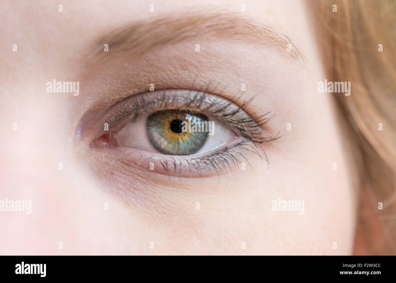 close-up of young womans eye and face blinking abstract MR model released - Stock Image